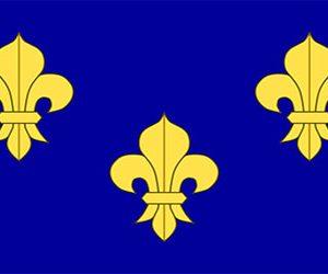 France  Fleur De Lis - Blue 150 X 90cm