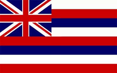 Hawaii State Flag - 150 x 90cm