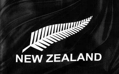 New Zealand Silver Fern National Flag 243 x 152cm